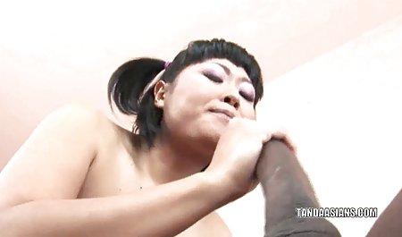 고양이 wird MIT Junge 닫기 포르노와 함께 번역